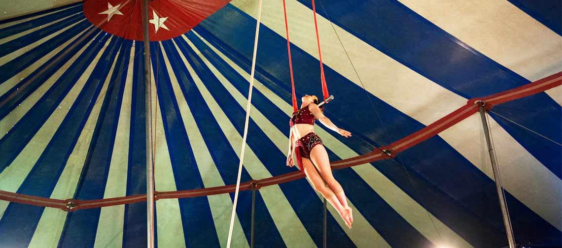 Wittenberg Circus